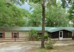 Foreclosed Home in Chipley 32428 MOSQUITO RD - Property ID: 4311555908