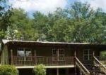 Foreclosed Home in Brookwood 35444 BUFFALO CREEK LN - Property ID: 4312765134