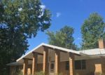 Foreclosed Home in Big Sandy 75755 CARRINGTON LN - Property ID: 4312901347