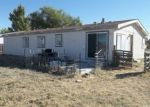 Foreclosed Home in Lovelock 89419 N MERIDIAN RD - Property ID: 4313582401