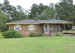 Foreclosed Home in Red Springs 28377 DANIEL MCLEOD RD - Property ID: 4313663427