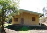 Foreclosed Home in Pahoa 96778 TIKI LN - Property ID: 4320096839
