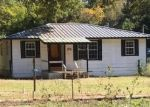 Foreclosed Home in Winnsboro 75494 TEXAS HIGHWAY 37 S - Property ID: 4323235342