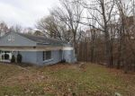 Foreclosed Home in Bluemont 20135 EVERGREEN LN - Property ID: 4326304674