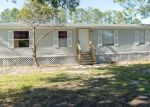 Foreclosed Home in Plant City 33565 HOLLOMAN BROOK CT - Property ID: 4328938198