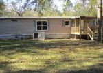 Foreclosed Home in Ray City 31645 LAKEVIEW DR - Property ID: 4329325825