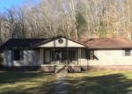 Foreclosed Home in Peytona 25154 LAUREL BRANCH RD - Property ID: 4343431196