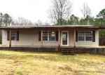 Foreclosed Home in Nauvoo 35578 FLORA DR - Property ID: 4344082474