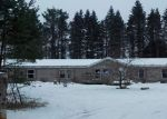 Foreclosed Home in Boyne Falls 49713 SKOP RD - Property ID: 4344276498