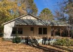 Foreclosed Home in Alexis 28006 ALEXIS LUCIA RD - Property ID: 4351316491