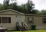Foreclosed Home in Ama 70031 GRIFFIN DR - Property ID: 4358225980