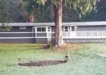 Foreclosed Home in Arlington 98223 116TH PL NE - Property ID: 4358758997
