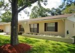 Foreclosed Home in Tampa 33624 BRIARBERRY LN - Property ID: 4366593459
