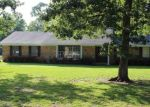 Foreclosed Home in Sour Lake 77659 PINE TIMBERS DR - Property ID: 4384614338