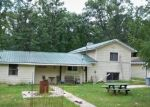 Foreclosed Home in Irons 49644 N IRONS RD - Property ID: 4391215932