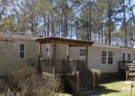 Foreclosed Home in Burgaw 28425 COPPERHEAD LN - Property ID: 4392774676