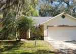 Foreclosed Home in San Antonio 33576 MEADOW LN - Property ID: 4393763169