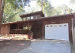 Foreclosed Home in Willits 95490 ROBIN PL - Property ID: 4394722339
