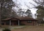 Foreclosed Home in Livingston 77351 SUNNY DR - Property ID: 4397703183
