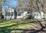 Foreclosed Home in Indianapolis 46226 N MITCHNER AVE - Property ID: 4398240586