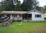 Pre Foreclosure in Selmer 38375 ADAMS EXT - Property ID: 1005070327
