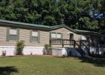 Pre Foreclosure in Bell 32619 NW 27TH WAY - Property ID: 1033755444
