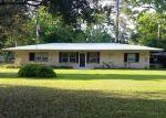 Pre Foreclosure in Wewahitchka 32465 LAKE HEIGHTS DR - Property ID: 1193184548
