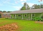 Pre Foreclosure in Bonneau 29431 CANAL ST - Property ID: 1195520256
