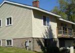 Pre Foreclosure in East Berne 12059 HELDERBERG TRL - Property ID: 1245576757