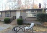Pre Foreclosure in Locust Grove 22508 LAKEVIEW PKWY - Property ID: 1301152584