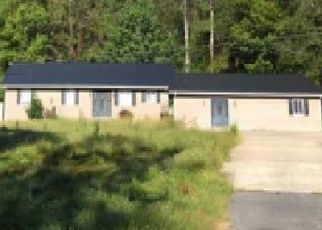 Foreclosure Auction in Hagerhill 41222 JUSTICE FARM DR - Property ID: 1719254383