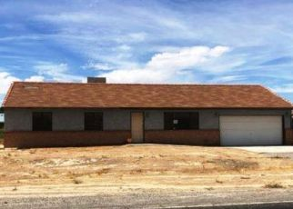 Foreclosure Auction in Pahrump 89048 S DANDELION ST - Property ID: 1724096630