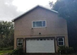 Foreclosure Auction in Plant City 33567 CRITTER LN - Property ID: 1724872723