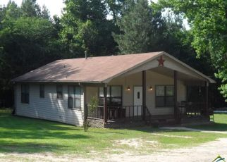 Foreclosed Home in Winona 75792 COUNTY ROAD 345 - Property ID: 1394763389