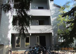 Foreclosed Home in Steamboat Springs 80487 VILLAGE DR - Property ID: 2016010674