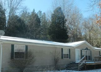 Foreclosed Home in Stonefort 62987 OLD TOWN RD - Property ID: 3209795973