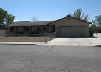 Foreclosed Home in Fernley 89408 FLINT ST - Property ID: 3789868426