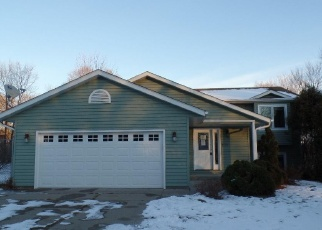 Foreclosed Home in Big Lake 55309 LAKE ST N - Property ID: 3863471264