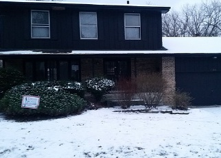 Foreclosed Home in Matteson 60443 CARNATION LN - Property ID: 3913344238