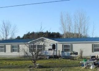 Foreclosed Home in Sanford 48657 W HUCKLEBERRY RD - Property ID: 3948550792