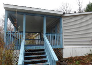 Foreclosed Home in Arkville 12406 LYMAN TODD DR - Property ID: 4082997863