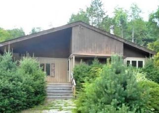 Foreclosed Home in Deposit 13754 MARSH POND RD - Property ID: 4208840482