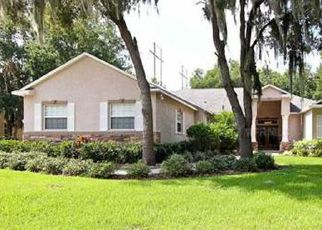 Foreclosed Home in Lithia 33547 WILD ORCHID DR - Property ID: 4216861541