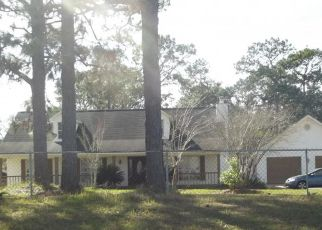 Foreclosed Home in Irvington 36544 LEE BISHOP RD - Property ID: 4221579394