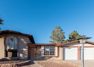 Foreclosed Home in El Paso 79912 CAROUSEL DR - Property ID: 4235264324