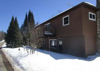 Foreclosed Home in Pickerel 54465 S SHORE DR - Property ID: 4243497359