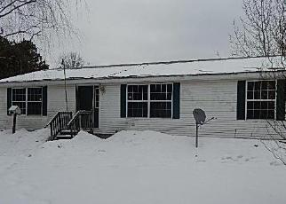 Foreclosed Home in Pentwater 49449 104TH AVE - Property ID: 4249312340