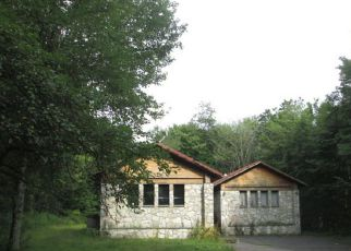 Foreclosed Home in Livingston Manor 12758 FOX MOUNTAIN RD - Property ID: 4250713423