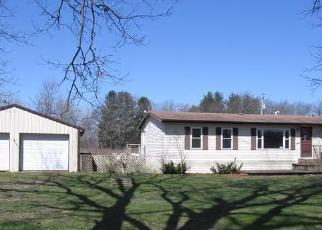 Foreclosed Home in Litchfield 49252 HUTCHINS RD - Property ID: 4262607481