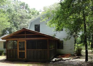 Foreclosed Home in Ocala 34482 NW 127TH CT - Property ID: 4271984955